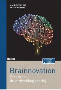 Brainnovation Image